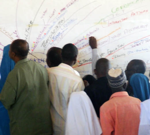 Facilitating the drawing of a concept map in Nigeria.